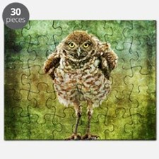 Burrowing Owl Puzzle