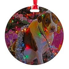 Merry Christmas Mutt Ornament