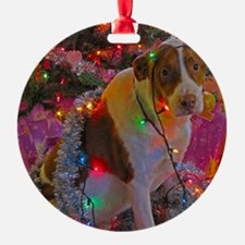 Merry Christmas Mutt Ornament
