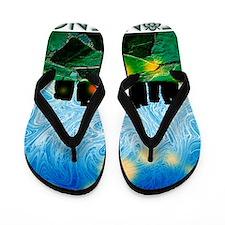 Stonehenge Flip Flops