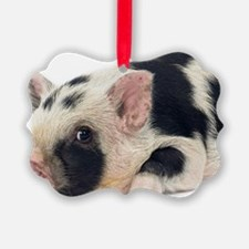 Micro pig chilling out Ornament