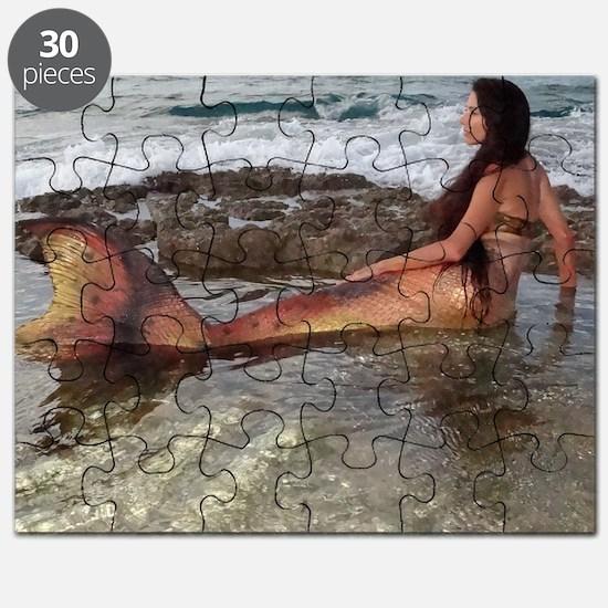 Tidepool Mermaid Puzzle