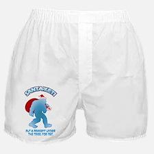 Yeti Santa Present Boxer Shorts