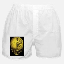 Human skull Boxer Shorts