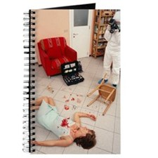 Photographing crime scene Journal