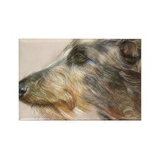 Scottish Deerhound Pastel Rectangle Magnet