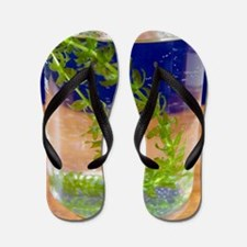 Photosynthesis in aquatic plants Flip Flops