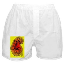 Kidney Boxer Shorts