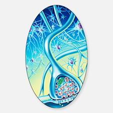 Nerve synapse Sticker (Oval)