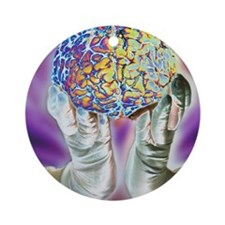 loved hands holding a human brain i Round Ornament