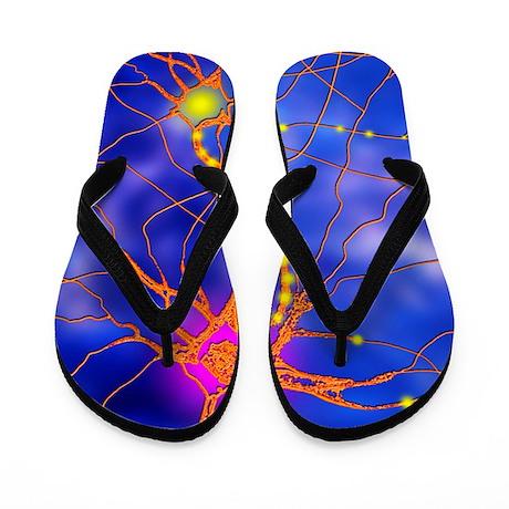 Nerve cells Flip Flops