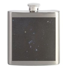 Orion constellation Flask