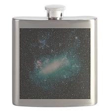 Optical image of the Large Magellanic Cloud Flask