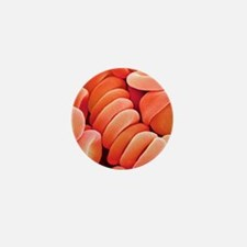 Red blood cells Mini Button