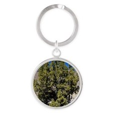 California juniper, Juniperus calif Round Keychain