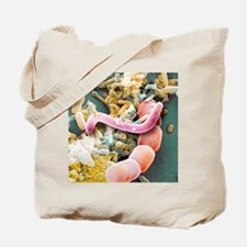 Assorted bacteria, SEM Tote Bag