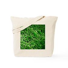 Borrelia bacteria, SEM Tote Bag