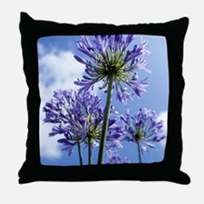 African lilies (Agapanthus sp.) Throw Pillow