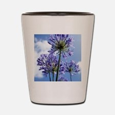 African lilies (Agapanthus sp.) Shot Glass