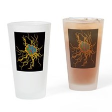 Coloured TEM of Salmonella bacteria Drinking Glass