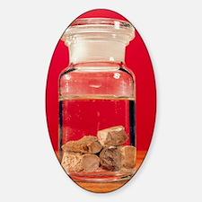 Phosphorus in a jar Decal