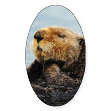 Alaskan Sea Otter Galaxy Decal