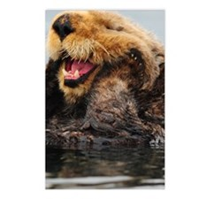 Alaskan Sea Otter Galaxy Postcards (Package of 8)