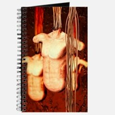 Spare body parts Journal