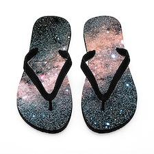Starfield centred on the constellation  Flip Flops