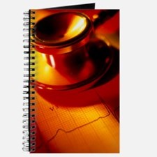 Stethoscope and a healthy electrocardiogra Journal