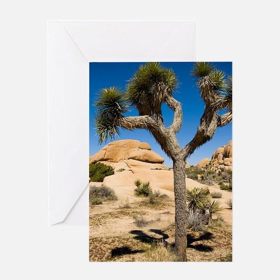 Joshua Tree Greeting Card