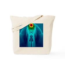 Supernova interaction Tote Bag