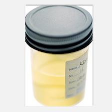 Urine sample Postcards (Package of 8)