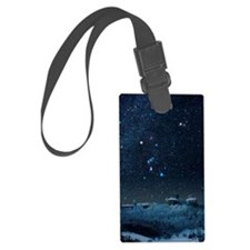 Winter sky with Orion constellat Luggage Tag