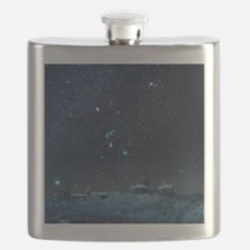 Winter sky with Orion constellation Flask