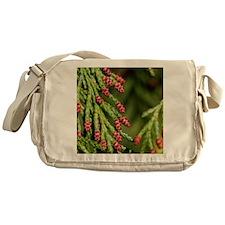 Chamecyparis lawsoniana Messenger Bag