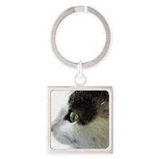 Green-Eyed White Tabby Cat Stare Square Keychain