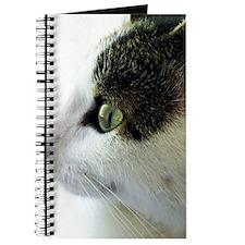 Green Eyed White Tabby Cat Starring Journal