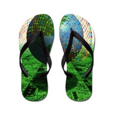 Abstract artwork of the World Wide Web Flip Flops
