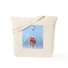 Digestive system, artwork Tote Bag