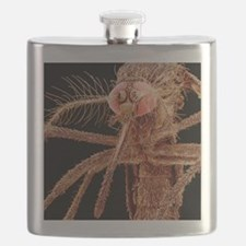 Asian tiger mosquito, SEM Flask