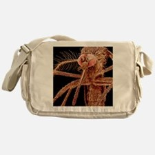 Asian tiger mosquito, SEM Messenger Bag