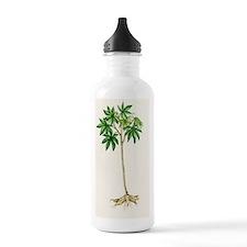 Cassava (Manihot escul Water Bottle