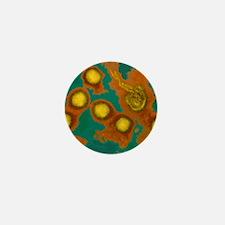 Rift Valley fever virus, TEM Mini Button