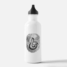 Cleopatra's asp Water Bottle