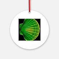 Coloured X-ray of a pecten scallop  Round Ornament