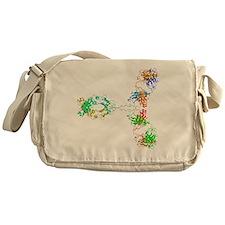 Immunoglobulin G antibody molecule Messenger Bag