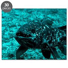 Coelacanth fish Puzzle