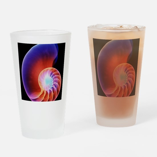 Coloured X-ray of the Nautilus shel Drinking Glass
