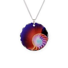 Coloured X-ray of the Nautil Necklace Circle Charm